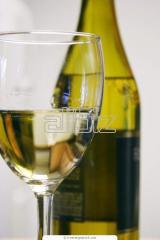 2010 Chardonnay Wine