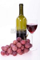 2009 Merlot Wine