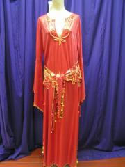 Lycra Saiidi Dress