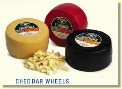 Cheddar Cheese Wheels