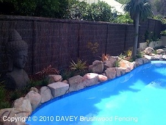Brushwood Fencing Panels