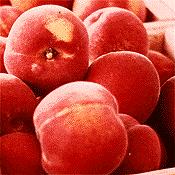 Aumann Fresh Peaches