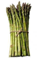 Processed Asparagus