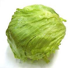 Delicious Lettuce
