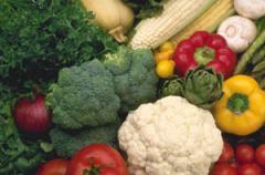 Premium Vegetables