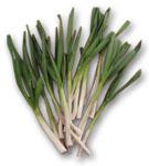 Fresh Garlic Sticks