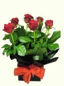 Red Rose Box Arrangement