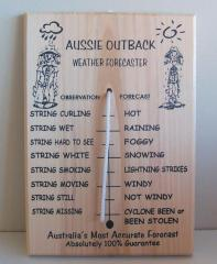 Australian Outback Weather Forecaster