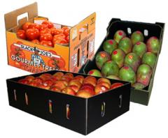 Fruits and produce packaging