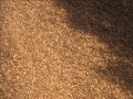 Bark Pine 15mm Mulches