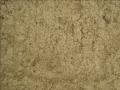 Sidney Sand