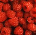 Raspberries Selection