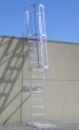 Cage Ladder