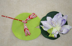 Order Water Lily Pond Lesson