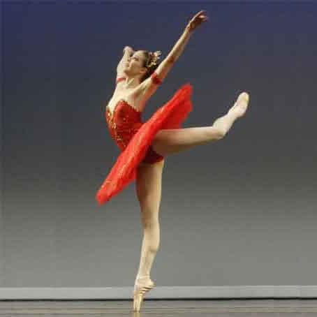 Order Adult Ballet Beginners Class