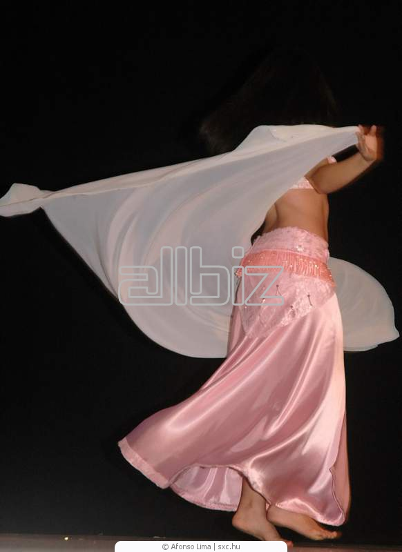 Order Private Group Belly Dance Lessons