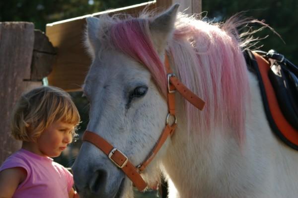 Order Pony Playgroup Service