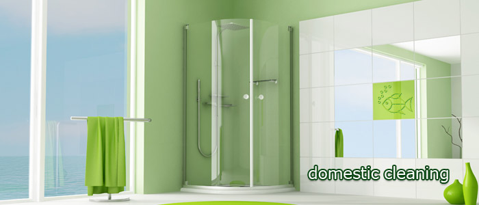 Order Domestic Green Cleaning