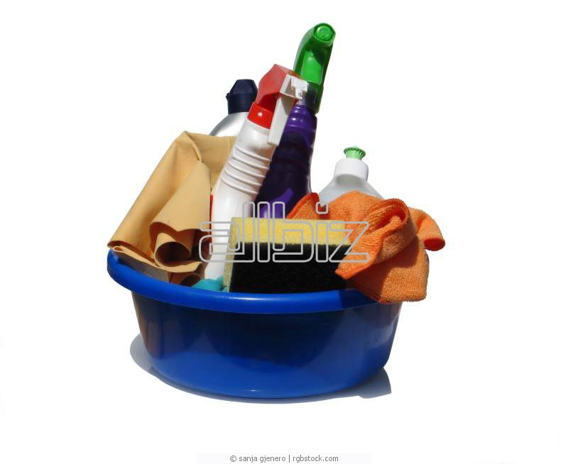 Order Spring Cleaning Service