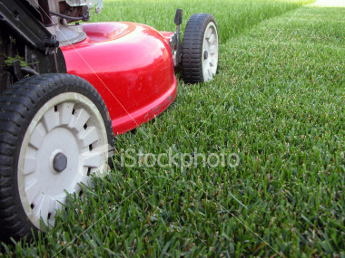 Order Lawn Mowing Service