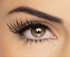 Order Eyelash Extensions