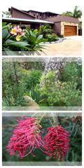 Garden Consultations