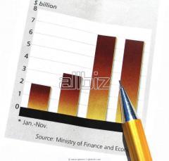 Budgeting & Financial Analysis