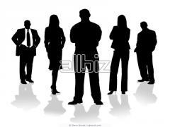 Marketing & Management Coaching