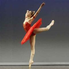 Adult Ballet Beginners Class