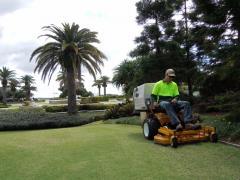 Liquid Lawn Fertilizing and Greening