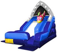 Shark Escape Slide