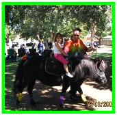 Pony Ride Service