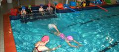 Adult Swimming Classes