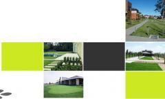 Commercial Mowing & Garden Maintenance