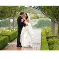 Special Occasions and Weddings