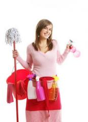 Executive House Cleaning