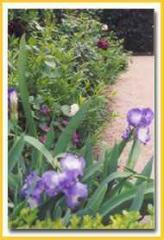 Garden Management Programme