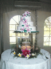 Clear Fountain & Stand Hire